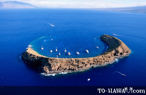 Diving at Molokini