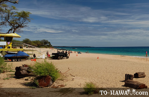 Beach in Makena State Park
