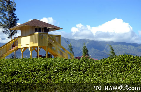 Kanaha Beach lifeguard tower