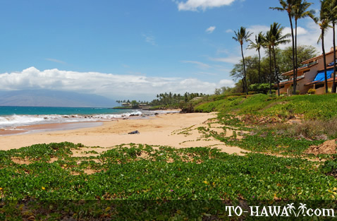 Beach area in front of Makena Surf
