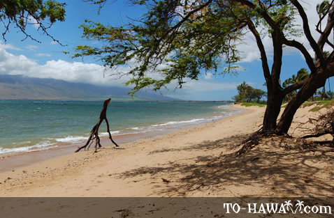 Waipuilani Beach in Kihei