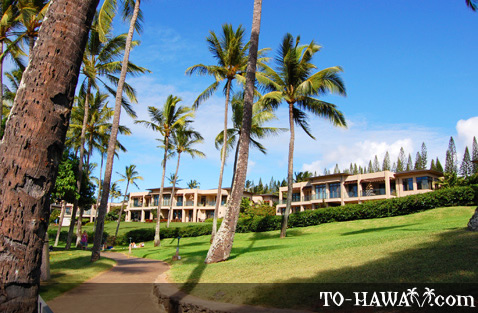 Kapalua beachfront homes
