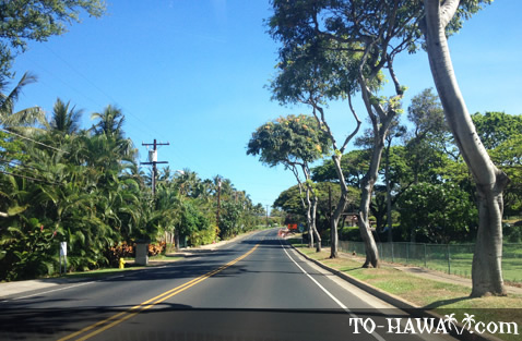 South Kihei Road