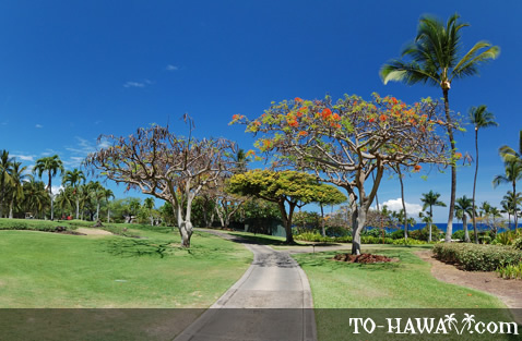 Makena Beach and Golf Resort grounds