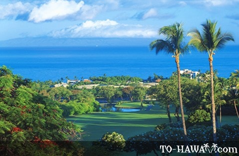 Wailea Blue Course hole 15