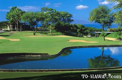 Wailea Blue Course hole 18