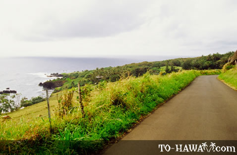 View from Pi'ilani Highway