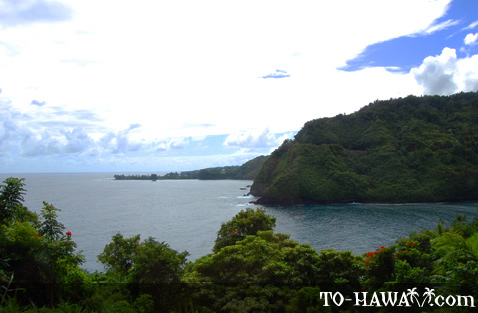 Scenery along the Hana Highway