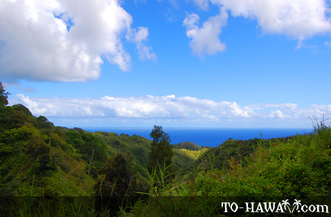 Scenic view on Hana Highway