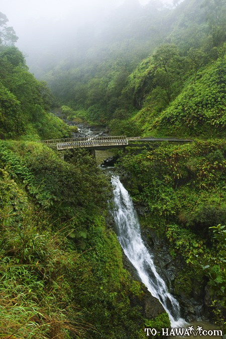 hana highway hawaii - photo #23