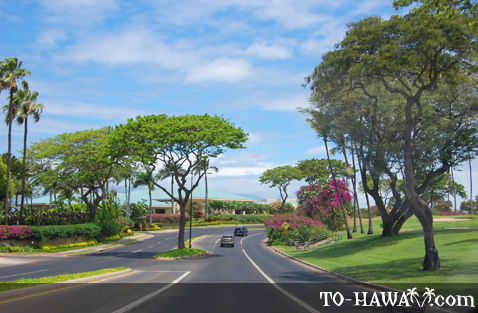 Driving in Wailea