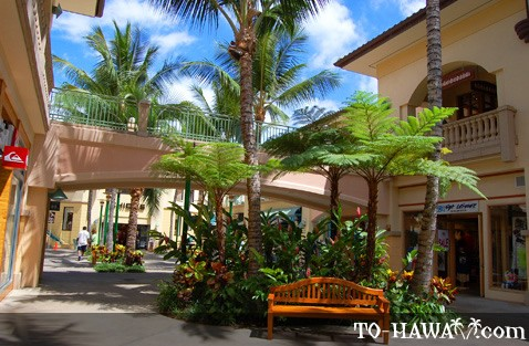 Luxurious stores in Wailea