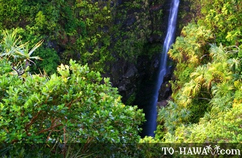 Lower Puohokamoa Falls