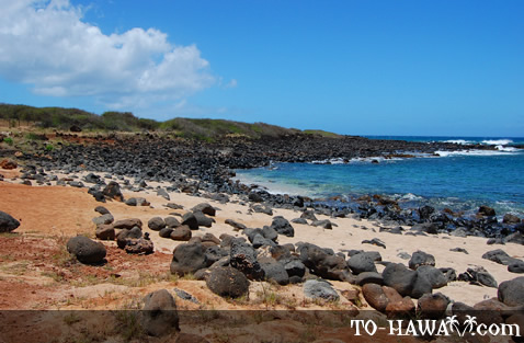 Good fishing beach on Molokai