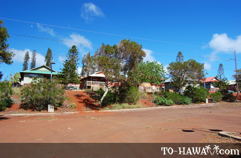 Homes in Maunaloa