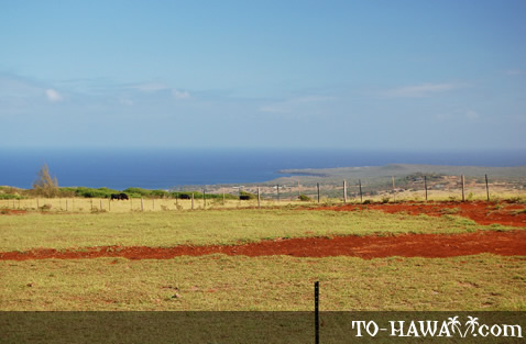 View to Molokai's west shore