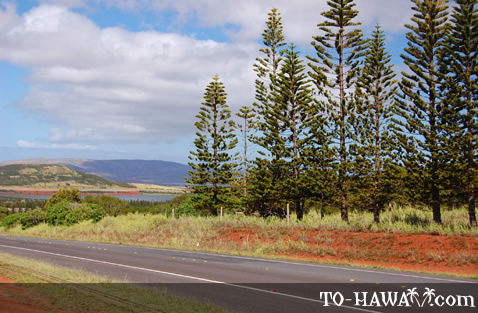 Another scenic lookout on Kalae Highway