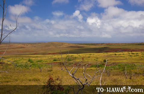Beautiful scenery on West Molokai