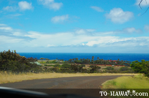 View to the ocean and West Molokai resorts