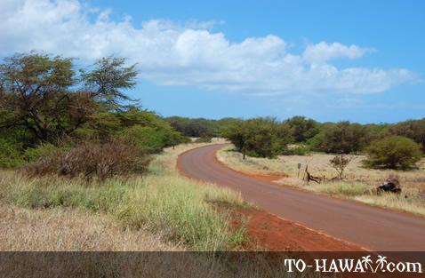 West Molokai road