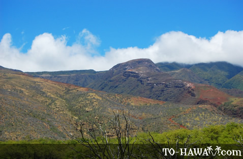 Scenic Molokai views