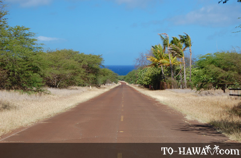 West shore Molokai road