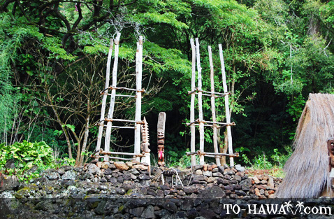 Hawaiian heiau in Waimea Valley