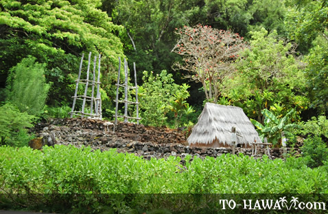Located in Waimea Valley