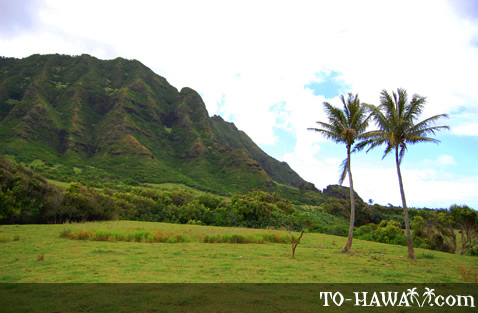 Scenic valley near Kualoa Ranch on Oahu