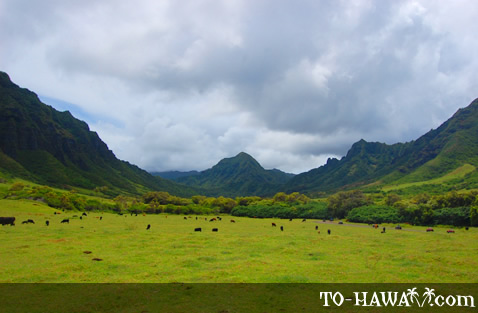 Ka'a'awa Valley on Oahu