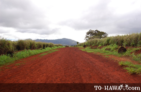 Red dirt road leads to the ancient site