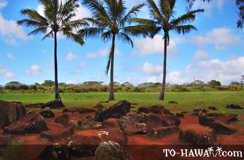 Hawaiian historic site