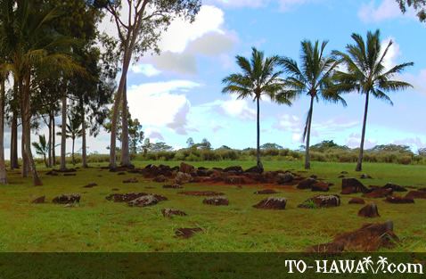 Hawaiian royal women gave birth here