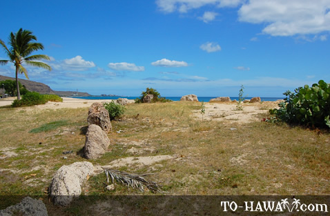 Remains of a Hawaiian settlement