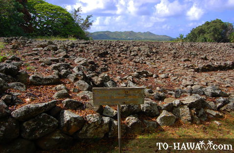 Sacred Hawaiian grounds