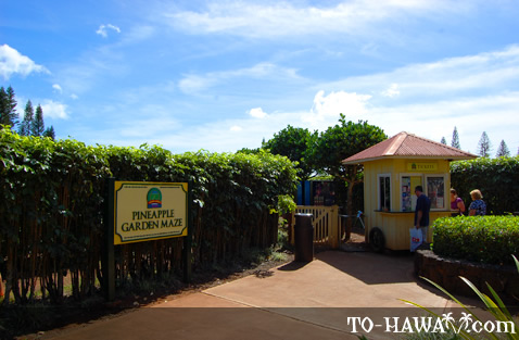 Entrance to Pineapple Garden Maze