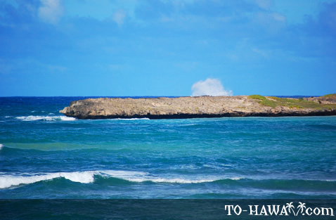 Barren rock
