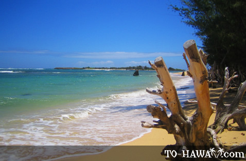 Another view from Malaekahana Bay
