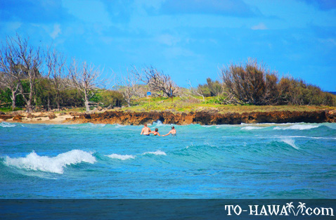 Walking to Goat Island