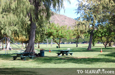 Kapiolani picnic tables
