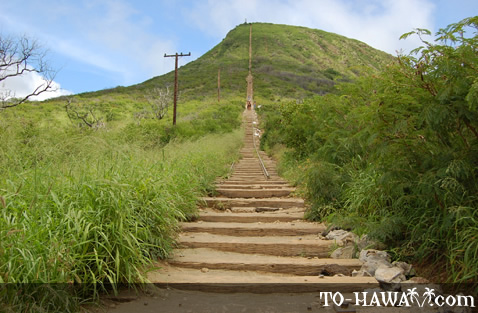 The beginning of Koko Crater hike