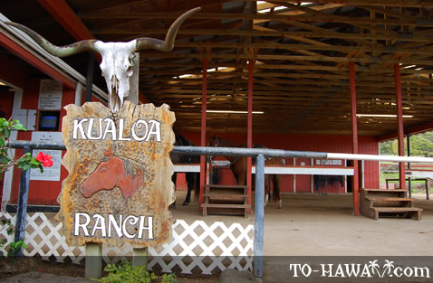 Kualoa Ranch stable