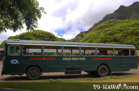 Kualoa Ranch tour bus