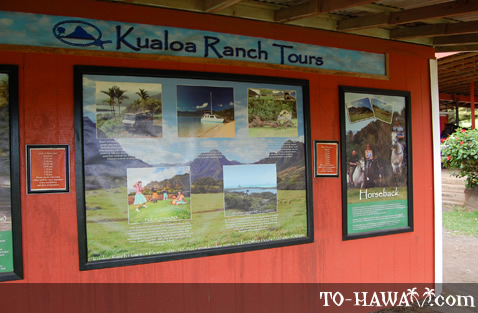 Kualoa Ranch tour info