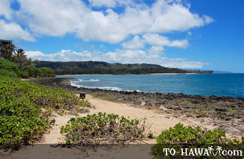 View to Turtle Bay Beach