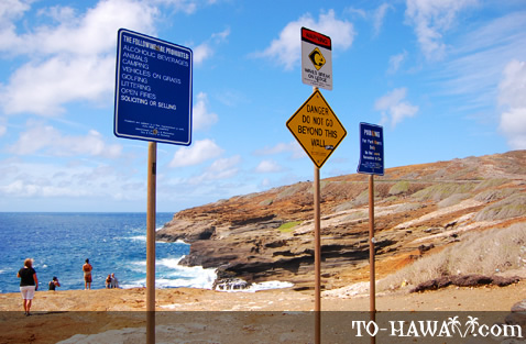 Warning signs along the shore