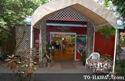 Entrance to the Tropical Farms on Oahu