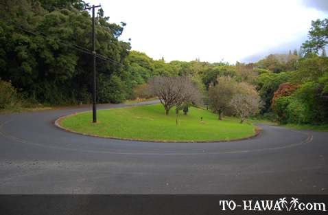 Round Top Drive on Oahu