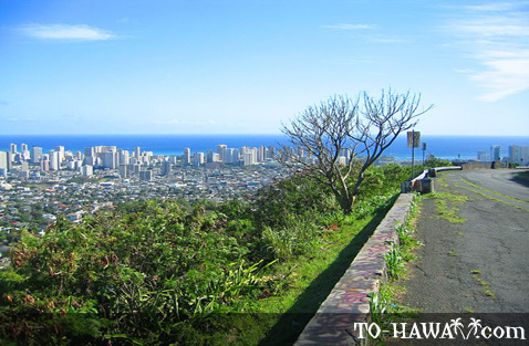 View to Honolulu from Tantalus