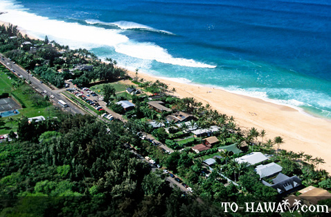 Ehukai Beach from above